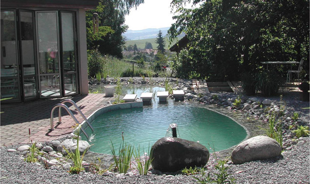 Introducing natural swimming pools to the north american market aqua magazine Natural swimming pool builders