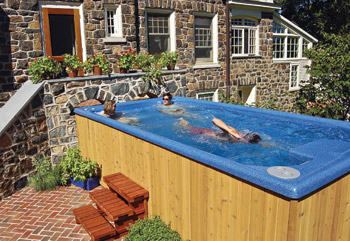 Could smaller yards could spell bigger sales for swim spas - How much is an endless pool swim spa ...