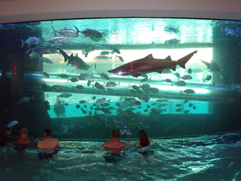 World 39 S 10 Coolest Hotel Pools Aqua Magazine