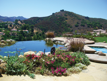 Photo Of Garden With Vanishing Edge Pond