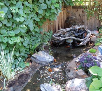 Working Big Ideas Into Small Backyard Spaces - AQUA Magazine