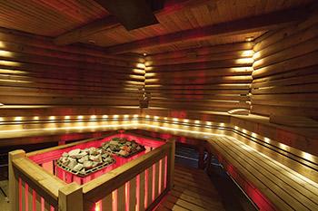 In The Hot Seat 2014 Sauna Roundup Aqua Magazine