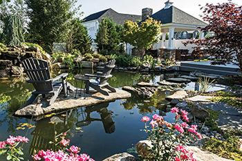The Art Of Natural Looking Swimming Ponds Aqua Magazine